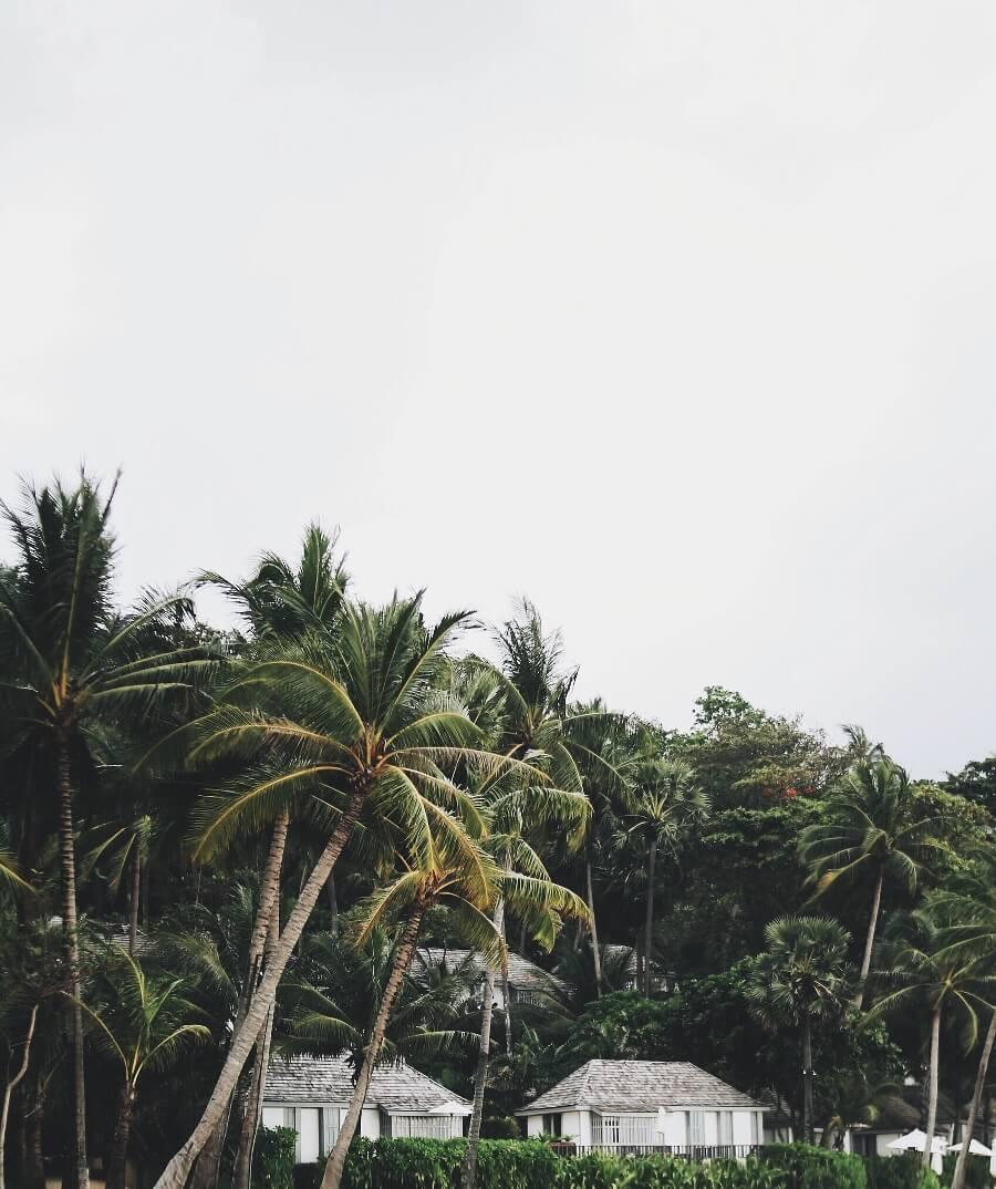 thesurin_beachhouses