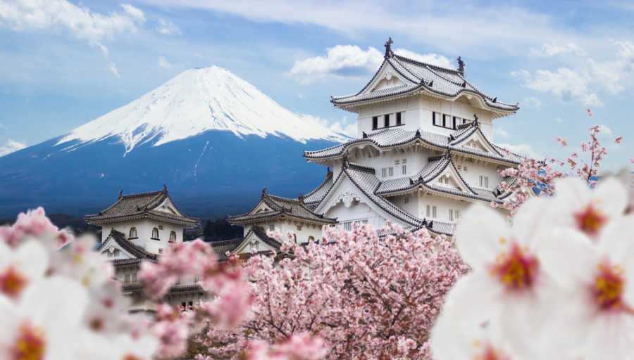 THE ULTIMATE JAPAN TRAVEL GUIDE - The Asia Collective